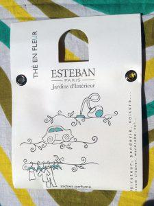 esteban-jardins-dinterieur